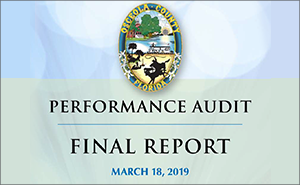 2019 County Performance Audit Report