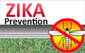 Zika Prevention